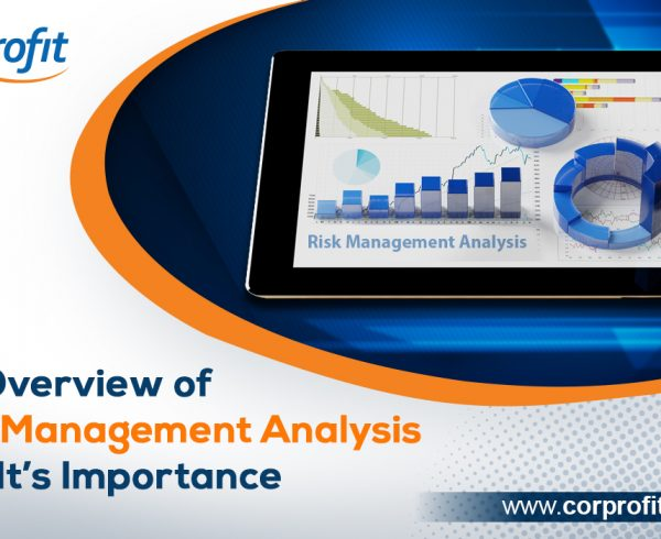 Risk Management Analysis